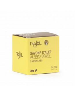 法國品牌 Najel 5片旅行裝 阿勒頗手工古皂 Aleppo Guest Soaps